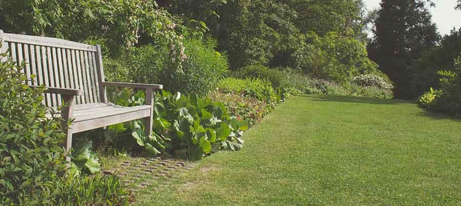 Rasenroboter kaufen-Garten