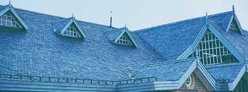 dachrinnenroboter-dach